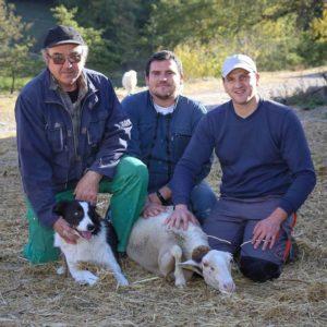 agneau bio direct producteur