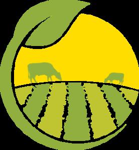 logo saveurs terroir