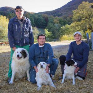 agneau direct producteur